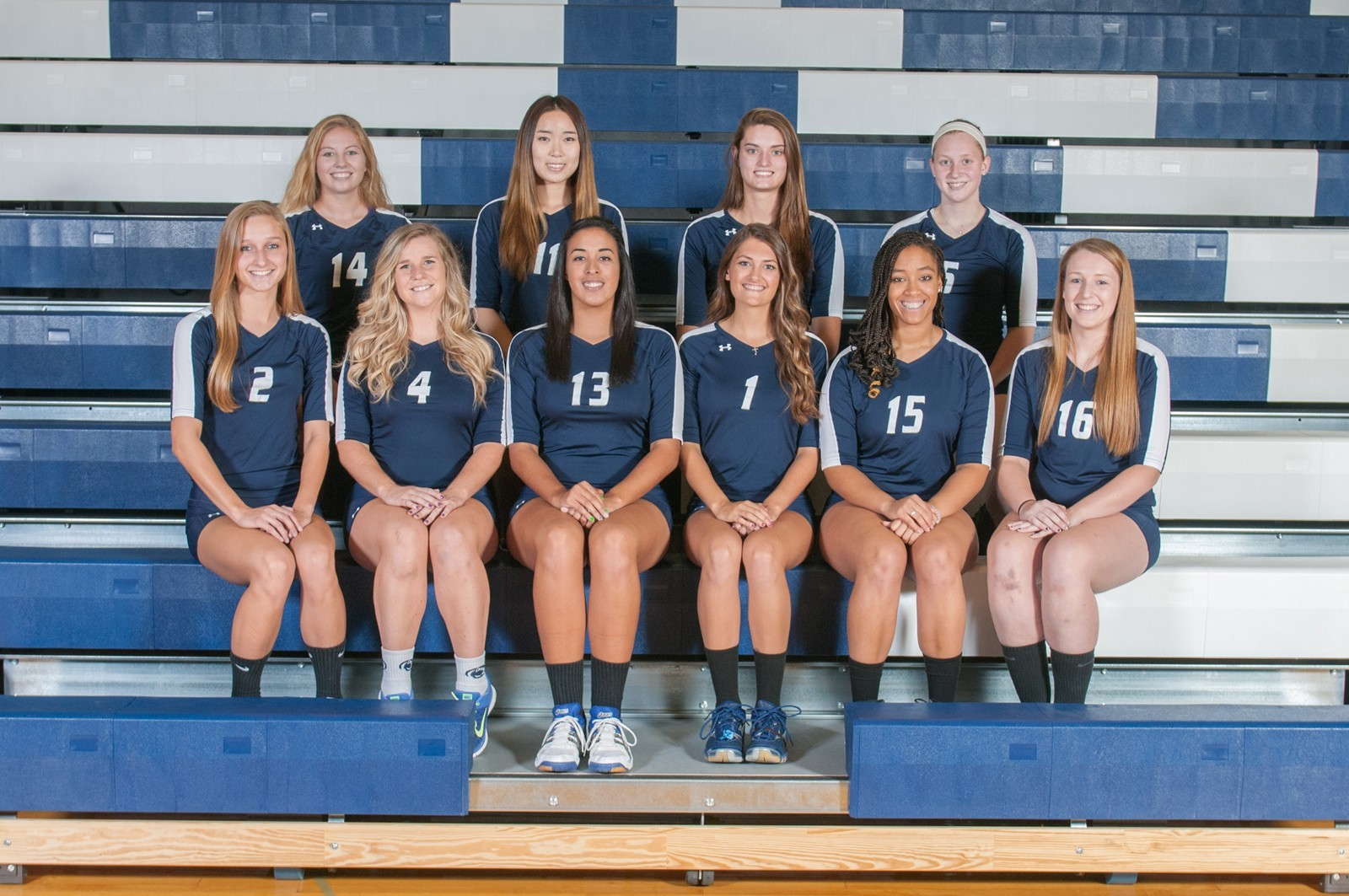 2014 Women S Volleyball Roster Penn State Berks Athletics